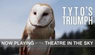 Tyto's Triumph